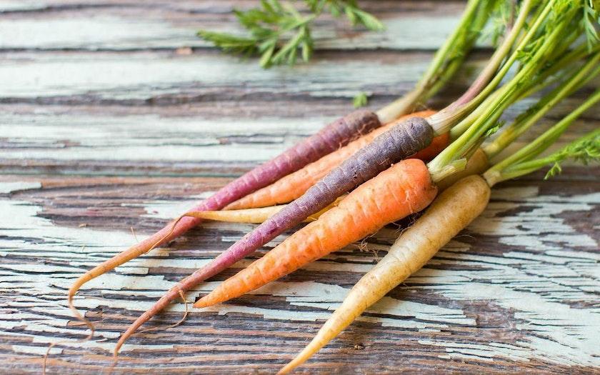 Organic Baby Rainbow Carrots Heirloom Organic Gardens