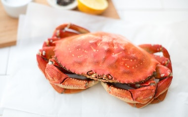 Whole Cooked Dungeness Crab (1.75-2 lbs)