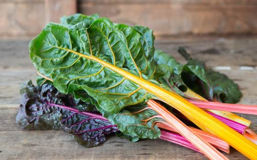 Organic Bright Lights Chard