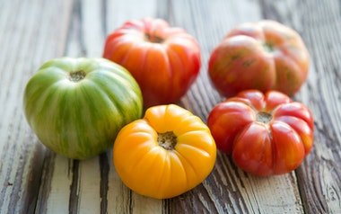 Organic Greenhouse Mixed Heirloom Tomatoes