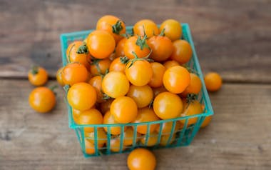 Organic Gold Nugget Cherry Tomatoes