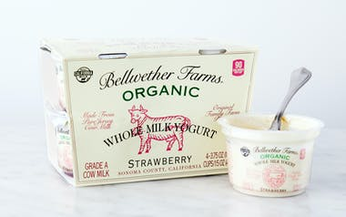 Organic Strawberry Whole Milk Yogurt Cups