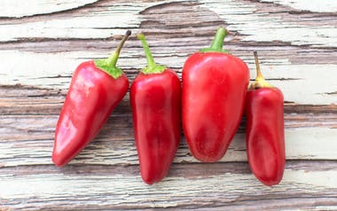 Organic Red Fresno Chili Peppers