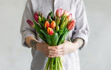 Organic Farmer's Choice Tulip Trio