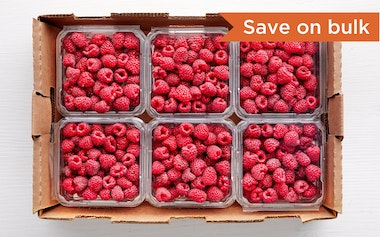Flat of Organic & Fair Trade Raspberries (Mexico)