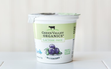 Organic Lactose Free Blueberry Yogurt