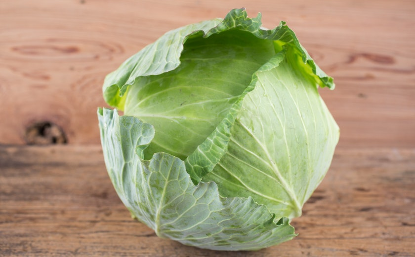 Organic Large Green Cabbage