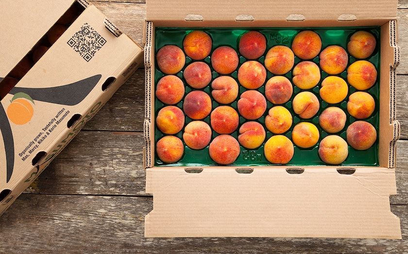 Masumoto Organic Peach Flat of the Week