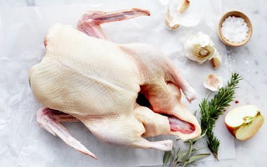 Organic Whole Duck (Frozen)