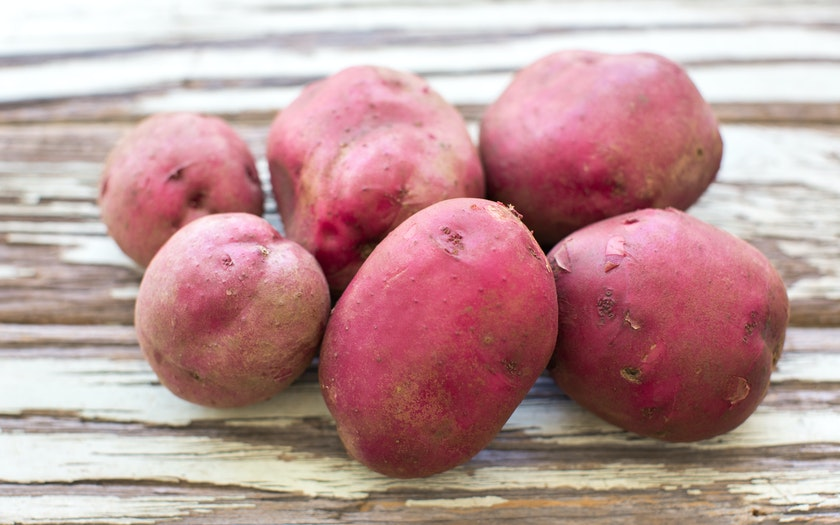 Organic Red Norland Potatoes
