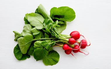Aquaponic Cherry Belle Radish
