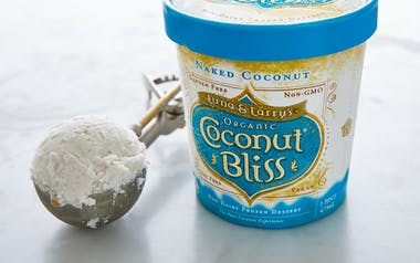 Organic Vegan Coconut Ice Cream