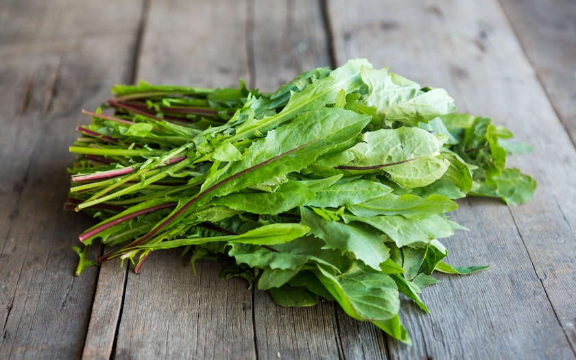Organic Red-Ribbed Dandelion Greens