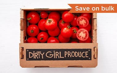 Bulk Organic Dry-Farmed Early Girl Tomatoes