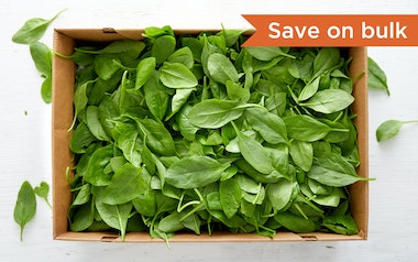 Bulk Pre-Washed Organic Baby Spinach