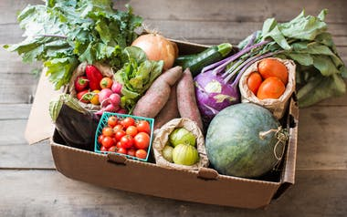 Organic Seasonal Produce Box