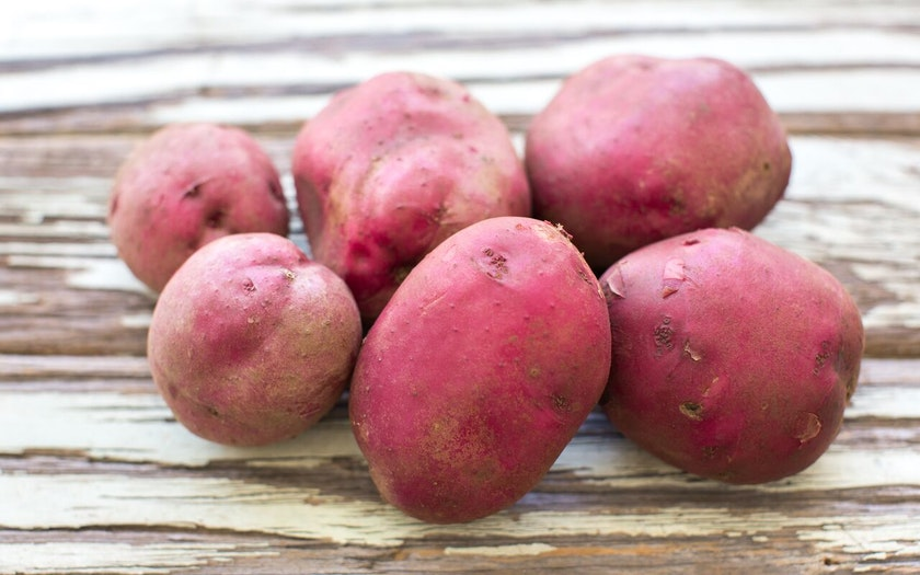 Organic Large New Red Lasoda Potatoes