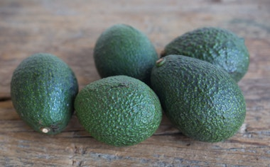 Organic Baby Hass Avocados