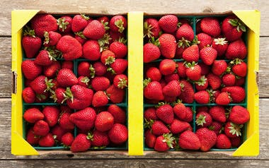 Flat of Organic Albion Strawberries